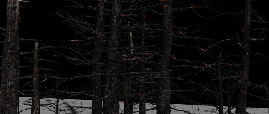 Texturing & Lookdev all burned trees