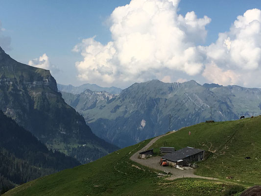 Der Weg über Sinsgäuer Schonegg mit Blick Richtung Oberrickenbach