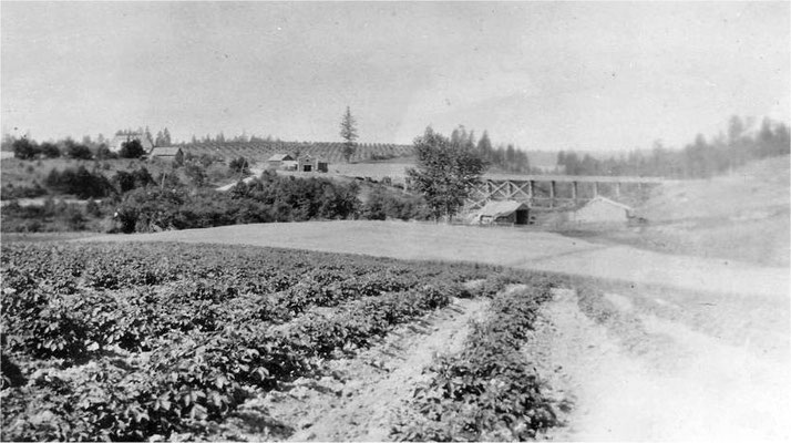 Forker Road Bridge, 1915 (built in 1905, torn down in 1922) View includes the blacksmith shop, Tony Spaeth's home, and the General Merchandise Store (burned August 1920)