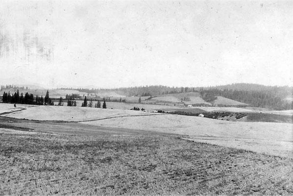 View from John Johnson's farm