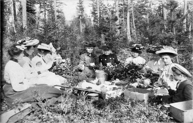 Picnic 1903: Left to right: Bertha (Johnson) McCabe, Pearl Munger, baby Bernice, Hildur Kronquist, Matilda Kronquist, Matilda Johnson, Mrs. Broberg, May Lind Dill, Mary Johnson, Hazel Johnson, Violet Johnson (Pipgras)