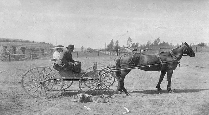 1922: The Beldens rented an apple horse from the Johnson family (notice the old bridge on Forker Road – built in 1904-1905)