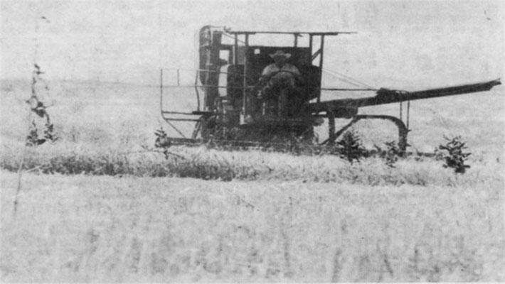 "Foothills ""Roots"":  Harvesting, Leo ?, Aug 1974"
