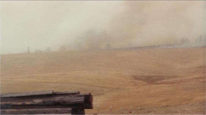 Firestorm: October 16, 1991