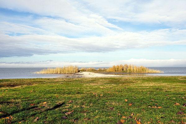 kleine Insel vor der Liegewiese