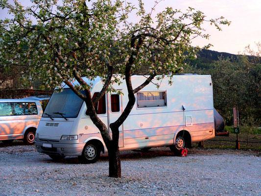 Stellplatz Motovun Abendsonne