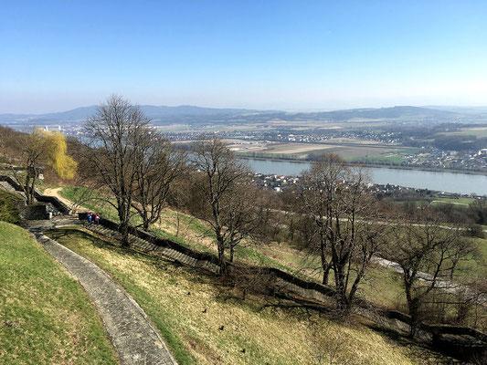 Donau unterhalb von Maria Taferl