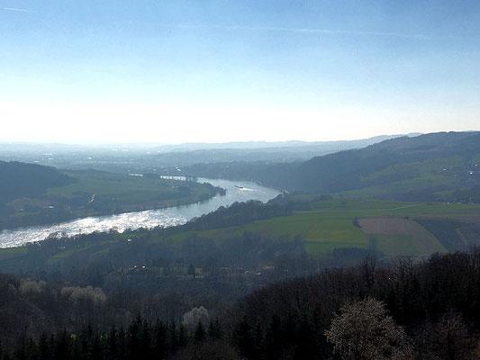 Donau flussaufwärts Richtung Persenbeug