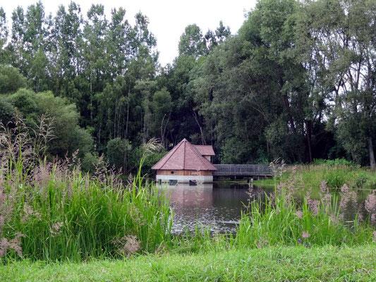 Teich Schloss Waldreichs