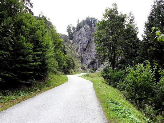Hopfgartenweg