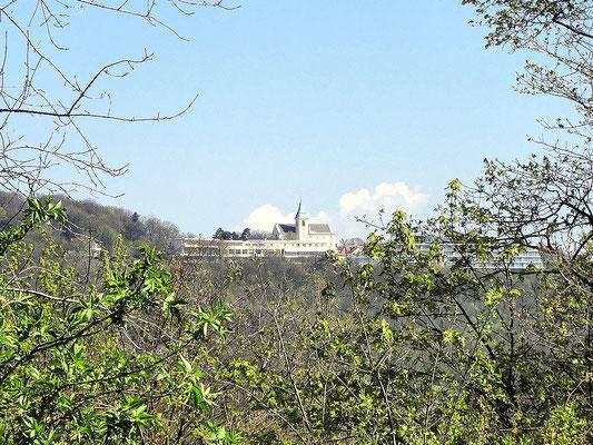 vom Cobenzl Blick zum Kahlenberg