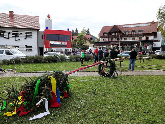 Bairisch Kölldorf / Maibaumaufstellen
