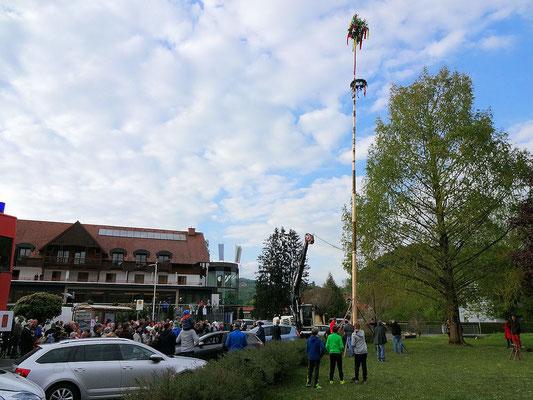 Bairisch Kölldorf / Maibaum steht