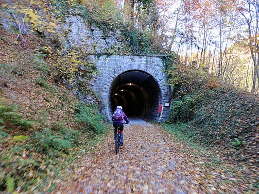 Bahntrassenweg nach Türnitz