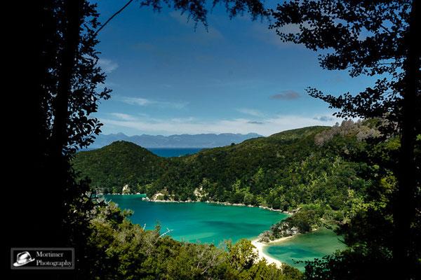 Traumhafte Halbinsel mit weißem Sand und extem türkisem Wasser im Dschungel