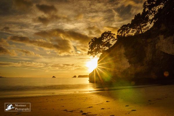 Unglaubliches Farbenspiel beim Sonnenaufgang an der Cathedral Cove im Gegenlicht