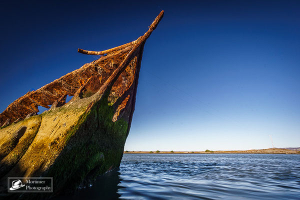 old and rusty shipwreck on a sunny day near Blenheim