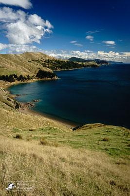 Wahnsinnig gute Aussicht auf Fjordlandschaft mit extrem blauem Wasser