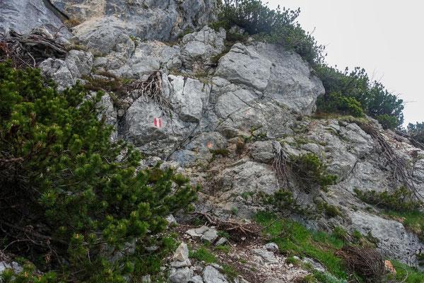 Abstieg mit Drahtseil
