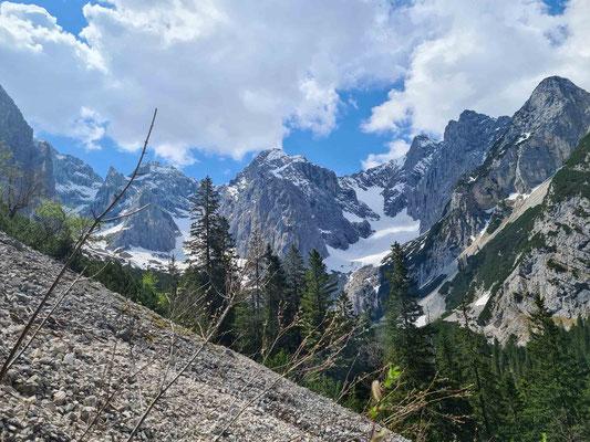 Blick ins Oberrheintal