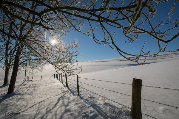 Winter Impressionen -Eifel