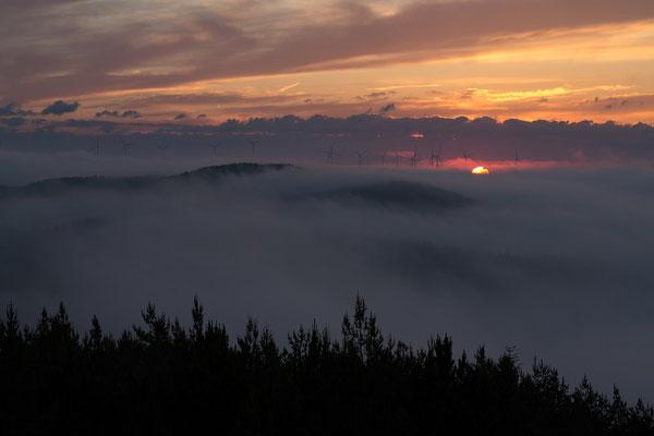 Sonnenaufgang am Apfelberg / Spessart