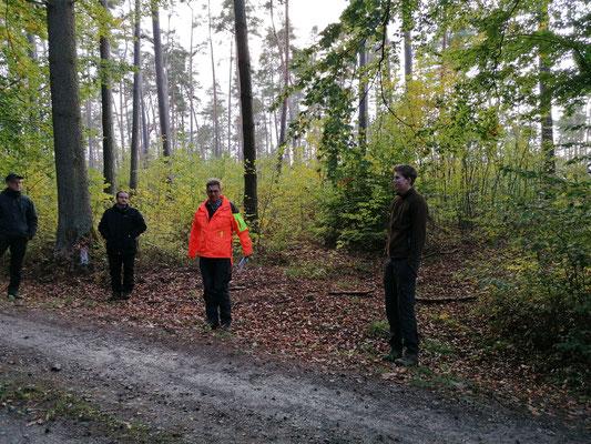 Christian Belz, der Forstleiter bei Graf Schönborn, vor der üppigen Naturverjüngung, die ohne Schutzmaßnahmen entstand!