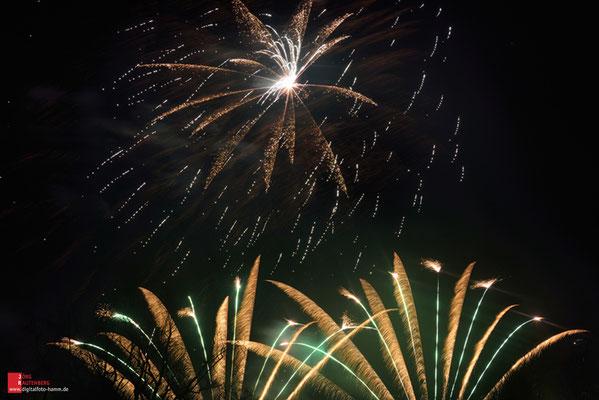 Feuerwerk Westfalenpark Dortmund
