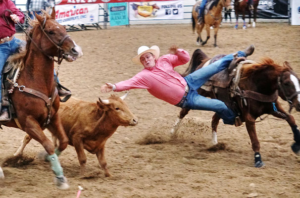 Rodeo in las Vegas / USA