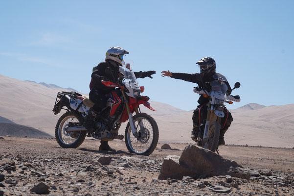 in der Wüste 2 /Chile