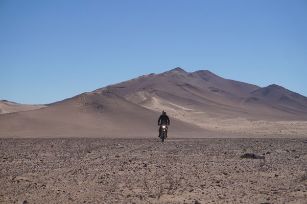 In der Wüste Teil 3 /Chile