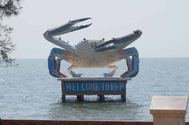 Endlich mal wieder Wasser - KEP begrüßt uns mit der Krabbe