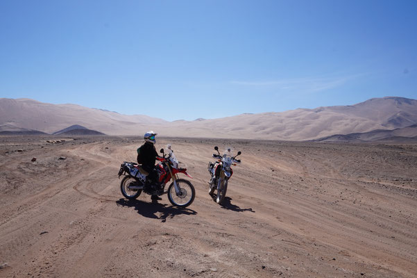 In der Wüste /  Atacama Rally - Chile