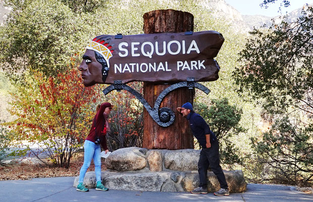 Sequoia Park - Im Land der Shoshonen! / Roadtrip USA