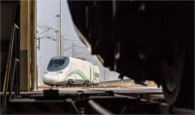Hochgeschwindigkeitszug Talgo (Saudi Arabien) - DB Engineering & Consulting