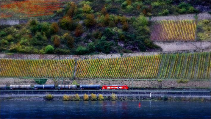 Im Rheintal