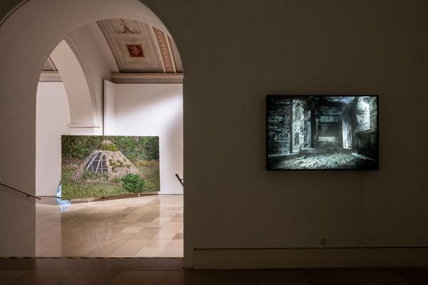 links: Oliver Westerbarkey: Die Lichtung rechts: Ben Goossens: hinterleuchtete Fotografie / Supernature, Galerie der Künstler München, 2021 Foto: Edward Beierle