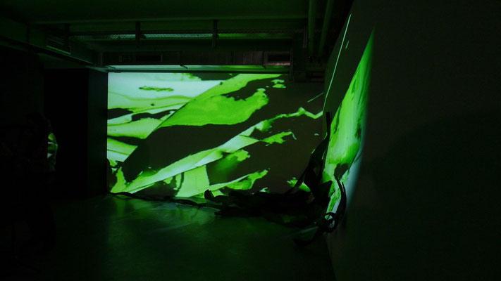 Arkatron, Eröffnung am 5.10.2010 Monika Humm Rauminstallation seaweed