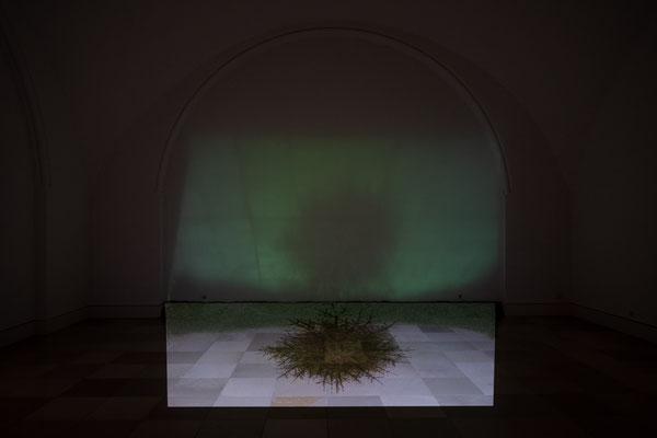 Patricija Gilyte: Orbis_clock, stop motion animation / Supernature, Galerie der Künstler München, 2021 Foto: Edward Beierle