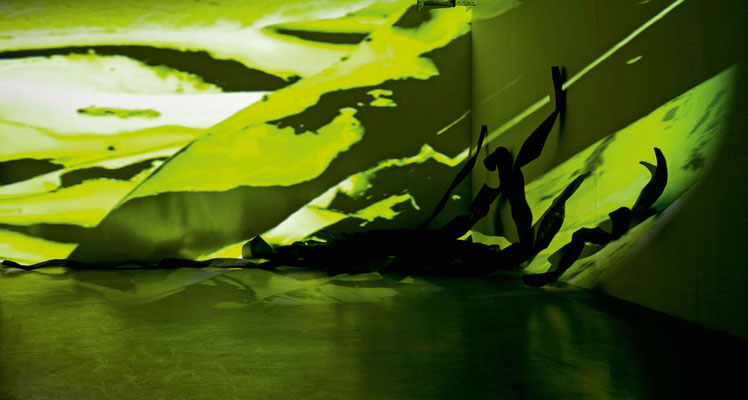 Monika Humm Rauminstallation seaweed, Große Rathausgalerie, KV Landshut 2012
