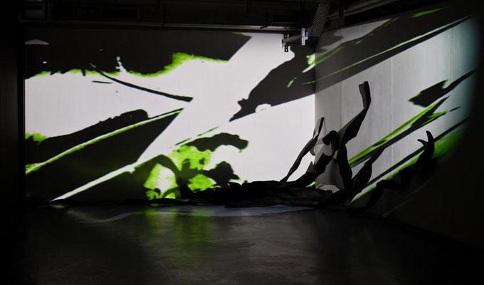 Monika Humm seaweed 1, Videostill, Rauminstallation, ARKATRON, Kunstarkaden, München 2010
