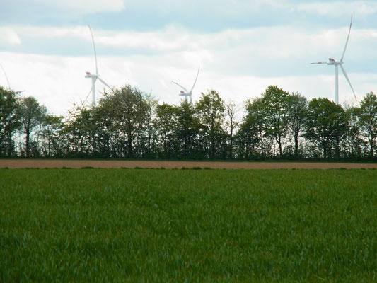 Windkraft - gleichmäßiges Rauschen der Flügel verleiht den Gedanken Flügel