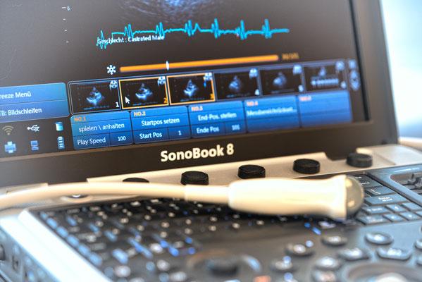 Sonobook 8 VET, MC6-V (micro convex)