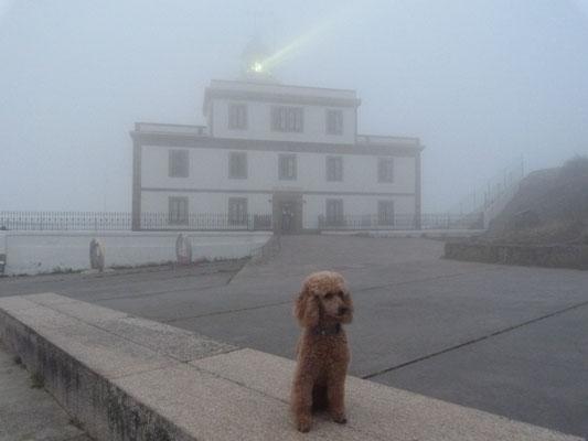 Klara und der Leuchtturm