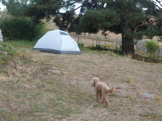 Klara kennt Nächte im Zelt