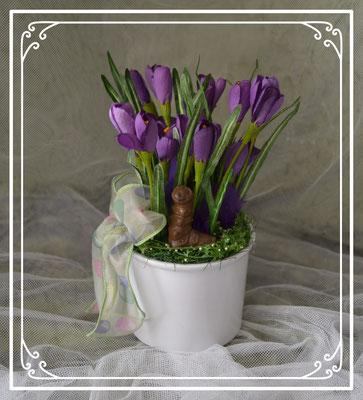 Ostergesteck lila im weißen Topf