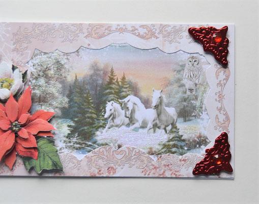 Drei weiße Pferde und Weihnachtsstern