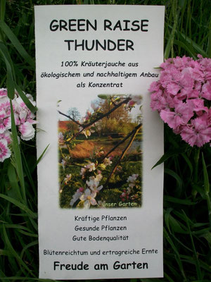 Green Raise Thunder - unser Produkt