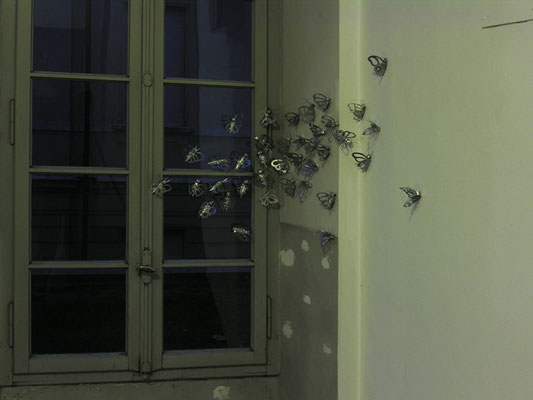 Butterfly Effects, 2009, silver enamel on paper, 140 elements, LA RADA, CENTER FOR CONTEMPORARY ART, Locarno, photo Miriam Steinhauser