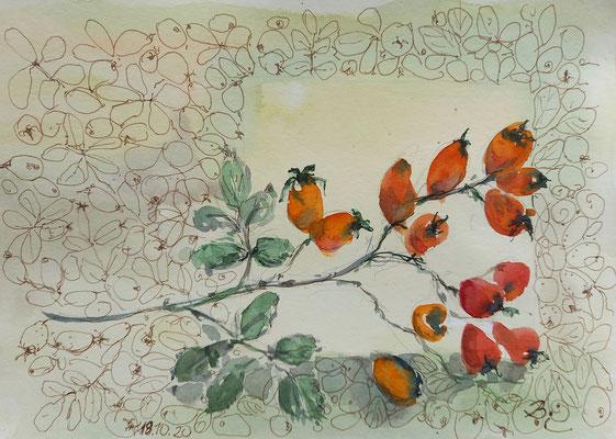 Hagebutten, Aquarell, Stifte, 21 x 15 cm